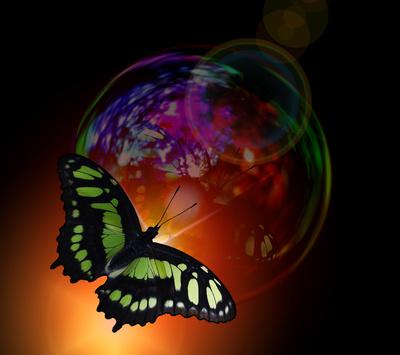 Seifenblase und Schmetterling